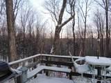 74 Pond Loop - Photo 8