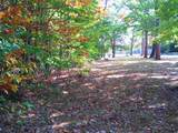 Lot 61A Colony Drive - Photo 4