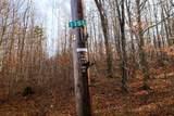 1262 Parker Road - Photo 14
