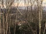 Lot 3 Georgia Mountain Road - Photo 13