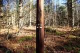 868 Maple Hill - Photo 35