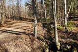 868 Maple Hill - Photo 7