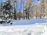 53 Birches Way - Photo 12