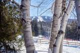 48 Mountain Reach Mews Road - Photo 34