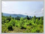 Lot #4 Bell Road - Photo 22