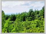 Lot #4 Bell Road - Photo 23