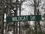 Wildcat Drive - Photo 2