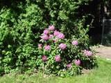 25 Spruce Drive - Photo 39