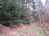 2479 Dane Hill Road - Photo 30