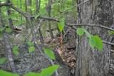 00 North Bear Swamp Road - Photo 4