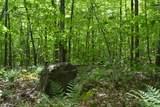 00 North Bear Swamp Road - Photo 7