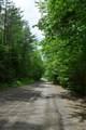 Pearl Lake Road - Photo 6