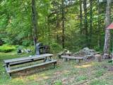 313 Mears Meadow Trail - Photo 11