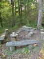 313 Mears Meadow Trail - Photo 12
