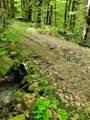 313 Mears Meadow Trail - Photo 17