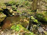 313 Mears Meadow Trail - Photo 19