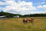 269 Burelli Farm Drive - Photo 1