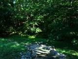 338 Goffstown Back Road - Photo 22