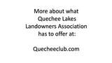 253 Old Quechee Road - Photo 19