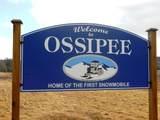 145 Ossipee Mountain Road - Photo 33