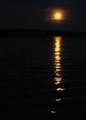 4 Moonstruck Drive - Photo 40