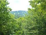 47 High Point Drive - Photo 3