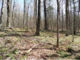 Lot 6 Popple Dungeon Road - Photo 4