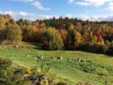 39 Highland Ridge - Photo 10