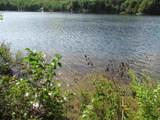 1155 Goose Pond Road - Photo 3