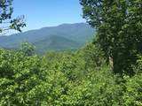 1563 Roxbury Mountain Road - Photo 4