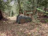 730 The Bend Road - Photo 11