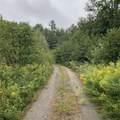 268 Calendar Brook Road - Photo 24