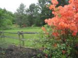 3159 Newark Pond Road - Photo 29