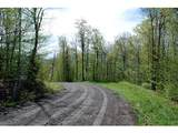 Lot 2 Cider Mountain Road - Photo 3