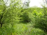 59 Corliss Road - Photo 1