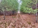 450 Bearcamp Highway - Photo 3