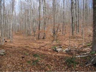 Lot 13 Off Victory Road, Burke, VT 05832 (MLS #4628977) :: The Gardner Group