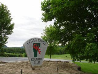 3A Birdie Drive, Hinesburg, VT 05461 (MLS #4635640) :: The Gardner Group