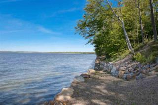 0 Orchard Shore Road, Colchester, VT 05446 (MLS #4636152) :: The Gardner Group