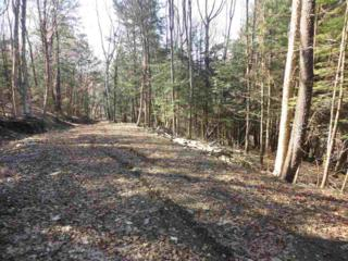 1030 Sherman Hollow Road H, Hinesburg, VT 05461 (MLS #4626052) :: The Gardner Group