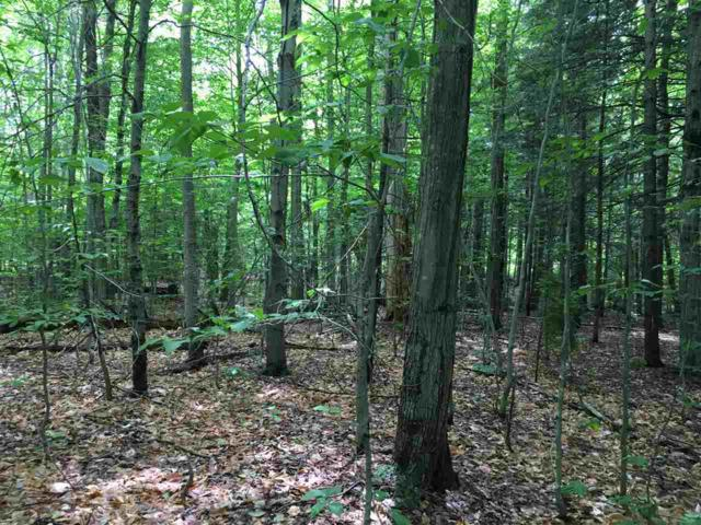 Edie Lane Lot 59, Jamaica, VT 05343 (MLS #4606963) :: The Hammond Team