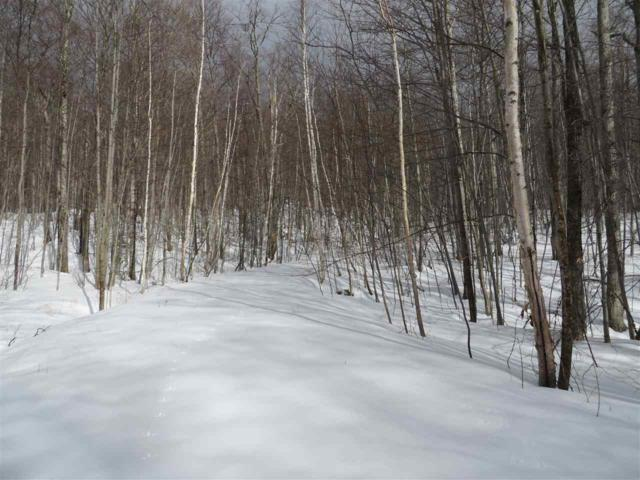 SugarBush EXT 0 Drive, Winhall, VT 05340 (MLS #4615960) :: Hergenrother Realty Group Vermont