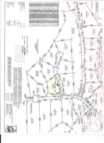Lot 12 Cradle Hill Lane Lot 12, Grantham, NH 03753 (MLS #4638474) :: The Hammond Team