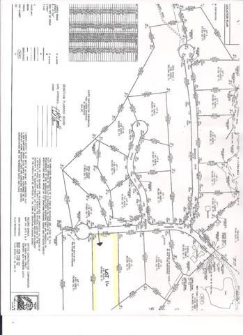 Lot 16 Hummock Lane Lot 16, Grantham, NH 03753 (MLS #4638484) :: The Hammond Team