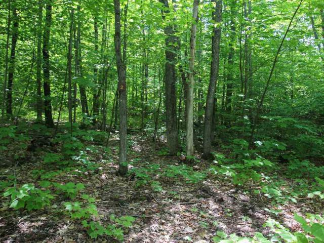 Lot #1 Ridge Road, Ashland, NH 03217 (MLS #4647631) :: The Hammond Team