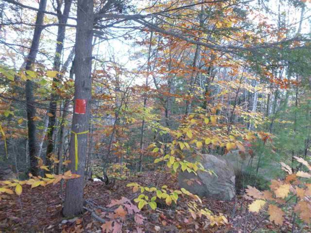 Lot 217-002 Pine Point Road, New Durham, NH 03855 (MLS #4668831) :: Keller Williams Coastal Realty