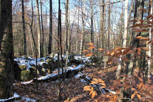 0 Moat View Drive #14, Albany, NH 03818 (MLS #4668832) :: Keller Williams Coastal Realty