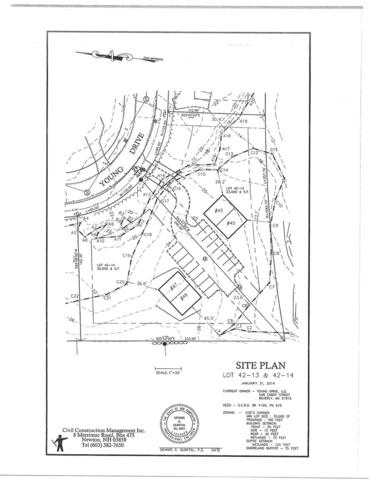 13 Young Drive, Durham, NH 03824 (MLS #4671618) :: Keller Williams Coastal Realty