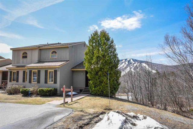46A Silver Birch (Tc #157) 46A, Dover, VT 05356 (MLS #4673788) :: The Gardner Group