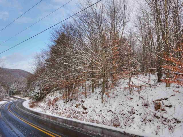 0 Main Road, Huntington, VT 05462 (MLS #4674886) :: The Gardner Group
